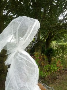 garden variety ghostschicken wire is so easy to work into any shape you want make life sized ghosts and dress them in cheesecloth - Cheesecloth Halloween Decorations