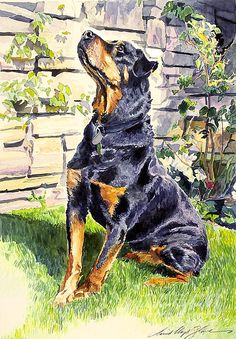 A friendly doberman named Harry - Watercolor by David Lloyd Glover wow wish i could draw like this. I dont thinkhes related to my grandpa gloverbut grandpa could draw too