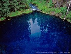 This is the Tamolitch Pool, in Oregon.