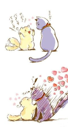 neko GerIta~! Kyaaaa so cute XD