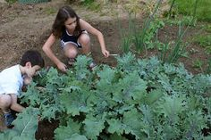 Bring Out the Green Thumbs in Your Kids - The Benefits of Gardening http://www.lovelysim.com/2013/08/guest-post-bring-out-green-thumbs-in.html
