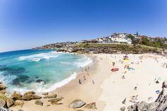 Photograph Tamarama Beach by Rachel MacDonald on 500px