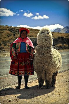 Quechua woman with her alpaca outside Cusco, Peru