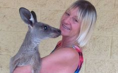 A wildlife carer has suffered a collapsed lung and broken ribs in a kangaroo attack at Cypress Gardens, on the Darling Downs, near Brisbane. Linda Smith, Cypress Gardens, Broken Ribs, Australian Animals, Image Caption, Facebook Image, Lunges, Pet Care, Savage