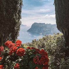 cfc1e9644 94 Best Favorite Places & Spaces images in 2017 | Beautiful places ...