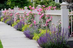 Nice Picket Fence with Colorful Flowers for a Trendy Front Yard Garden - Best Fr. - Face as well as Back Backyard Landscape Design Diy on a Budget plan - Garten White Picket Fence, White Fence, Flower Bed Designs, Pinterest Garden, Roses Pinterest, Design Jardin, Climbing Roses, Front Yard Landscaping, Landscaping Ideas