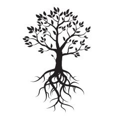 tree tattoos - Google Search