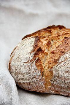 Abend-Brot