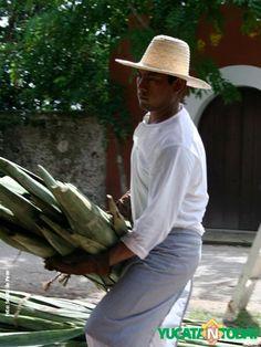 Processing Yucan's henequen/sisal in Yucatan at Hacienda Sotuta de Peon, Yucatan.