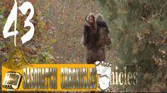Bigfoot Hotpsot Radio // SC EP:43 Beachfoot Interviews [Sasquatch Chroni...