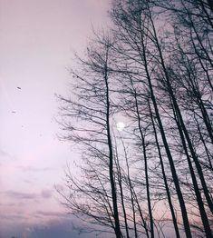 Twilight Dawn Sunset Nature shoot Scandinavia Full moon
