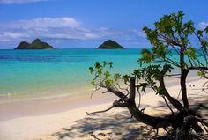 10 Beaches Around The World That Will Take Your Breath Away   Yes, get me to a beach now!