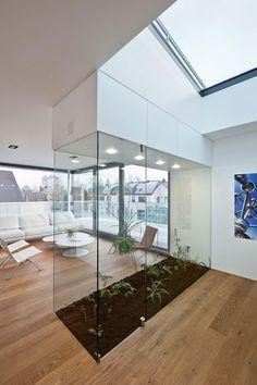 Stunning indoor garden and glass panel walls