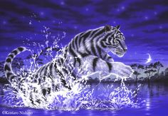 Tiger in the water - Art of Kentaro Nishino