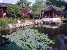 GARDEN of CULTIVATION ..  Suzhou Gardens .. Ming Dynasty Pavilion