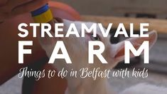 Things to do in Belfast with Kids - Streamvale Open Farm - Farm Visit fo. Belfast City Centre, Visit Belfast, Belfast Northern Ireland, Hidden Treasures, Interesting History, Best Location, Places To See, Things To Do, Blog