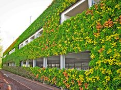 National grid house, warwick, uk, europe's largest living wall, one wo Architecture Durable, Green Architecture, Sustainable Architecture, Sustainable Design, Landscape Architecture, Architecture Design, Vertical Green Wall, National Grid, Nachhaltiges Design