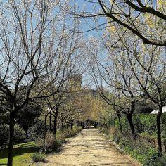 #liguria #spring #lazysunday #morning #arenzano