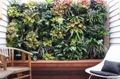 Create Good Feng Shui with Vertical Wall Gardens: Feng shui-wise, the best bagua areas for a vertical garden / living wall are the East and Southeast feng shui areas of your home or office. You can also have the living plant wall in the South, just be sure to add fire feng shui element decor solutions.