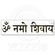 "Om Namah Shivaya: ""I honor the divinity that resides within me.""    ॐ नम: शिवाय:"