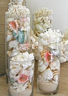 Playa Decor  conchas corales y estrellas de por SeashellCollection