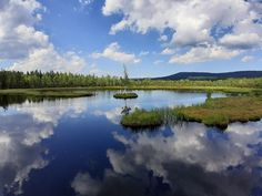 Jaká jsou nejkrásnější místa Šumavy? Tipy na výlety i s dětmi River, Outdoor, Outdoors, Outdoor Games, The Great Outdoors, Rivers