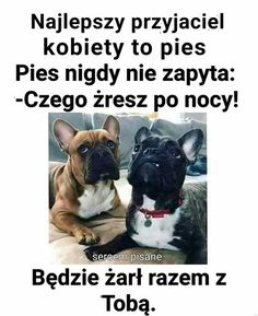 Memes Funny Faces, Funny Quotes, Funny Lyrics, Polish Memes, Weekend Humor, Funny Mems, Wtf Funny, Really Funny, Book Quotes