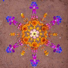 creación dānmālā por la artista de arizona Kathy Klein... mandalas hechos con elementos naturales, después de que se les toma la fotografía se dejan para que sorprendan a la próxima persona que los encuentre...