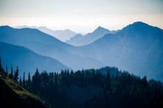 To get to this hike you drive up to Hurricane Ridge in Olympic National Park. The drive up to Hurricane Ridge is on a winding road with amazing views of the mountains.