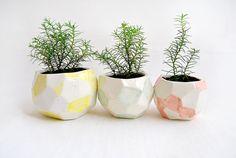 Fabricados en arcilla blanca, estos maceteros de cerámica son perfectos para tus pequeños cactus o plantas suculentas. Su parte exterior está
