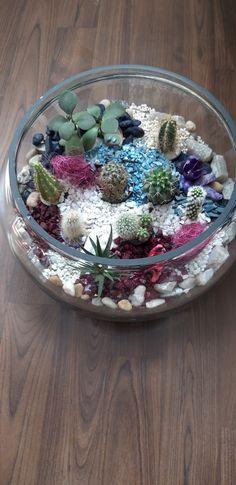 Terrarium, Acai Bowl, Breakfast, Flowers, Food, Home Decor, Acai Berry Bowl, Morning Coffee, Homemade Home Decor