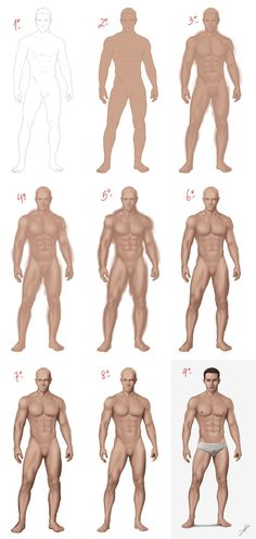 Sam steps by danielpilla figure drawing references рисование Human Figure Drawing, Figure Drawing Reference, Body Drawing, Anatomy Drawing, Digital Painting Tutorials, Art Tutorials, Character Art, Character Design, Body Sketches