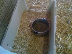Duck Waterer in Dog Crate Bottom Lined w/ Horse Bedding