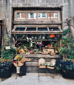 The cutest flower shop ever  #flowers #plants #interior #nyc