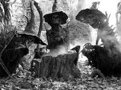Witch Hunt scary, short story, witches, woods