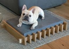 Perfect for your #dog house!