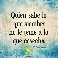 Quien sabe lo que siembra no le teme a lo que cosecha. Motivational Phrases, Inspirational Quotes, Positive Thoughts, Positive Quotes, Words Quotes, Me Quotes, Sayings, Quotes En Espanol, Start Ups
