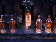 Absolut Originality | Another Something & Company