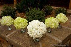 De Franse boeket Blog - inspirerende bruiloft & gebeurtenis florals >> Hydrangea boeketten, fotobestand - MyStockPhoto.com