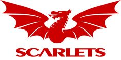 The Scarlets are one of the four professional Welsh regional rugby union teams. Based in Llanelli, south-west Wales the team play at the Parc y Scarlets stadium Welsh Rugby Team, Robin Logo, Rugby Union Teams, Wales Rugby, Corporate Identity Design, Team Mascots, World Rugby, Heineken, Volleyball
