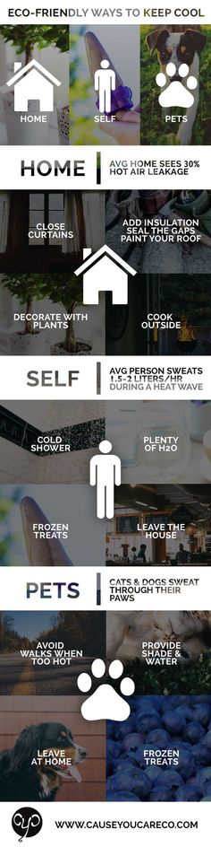 Learn about some eco-friendly ways to keep cool this summer without heating the planet! | Cause You Care #sustainability