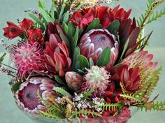 Protea, Grevillea Ivanhoe & Flowers, Alstromeria, Leucadendron and Calycina #CaGrown #Protea