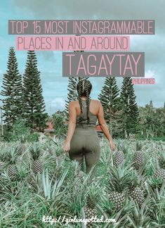 Top Instagrammable Places In And Around Tagaytay
