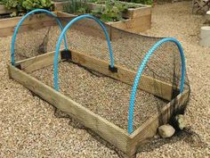 How To Make Crop Protection Tunnels For Raised Beds, Category diy garden ideas images fairy garden images garden art images garden ideas images garden images hanging garden images raised garden bed images building images diy garden decorations Raised Planter, Raised Garden Beds, Raised Beds, Raised Gardens, Veg Garden, Garden Planters, Vegetable Gardening, Veggie Gardens, Garden Art
