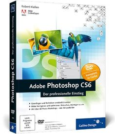 Adobe Photoshop CS6: Der professionelle Einstieg (Galileo Design) von Robert Klaßen http://www.amazon.de/dp/3836218844/ref=cm_sw_r_pi_dp_5FWyub07T1RVK