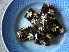 chokolade med bellis/skovdal.dk