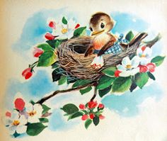 A sweet little springtime robin. #birds #vintage #illustrations