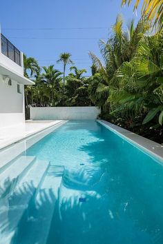 See this stunning white custom white modern home with swimming pool designed by NC-Office architects. This is a class Florida design with beautiful pool area. Big Swimming Pools, Swimming Pool Designs, Tadao Ando, Backyard Pool Designs, Pool Landscaping, Porches, Olympic Size Pool, Garden Pool, Palm Garden