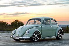 Philip's Jade Green Beetle | Flickr – Compartilhamento de fotos!