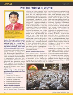 Poultry Farming in Winter- Article Published in Poultry Planner - Pet , Poultry & Cattle Healthcare.